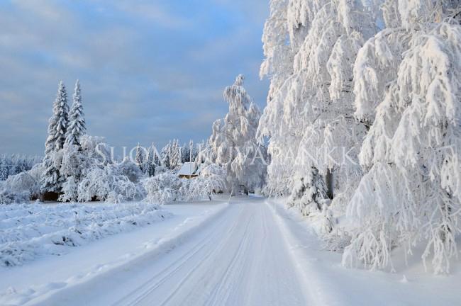 Lumi Laukut Suomi : Talvi lumi tykky tie kategoriat suomi kuvapankki