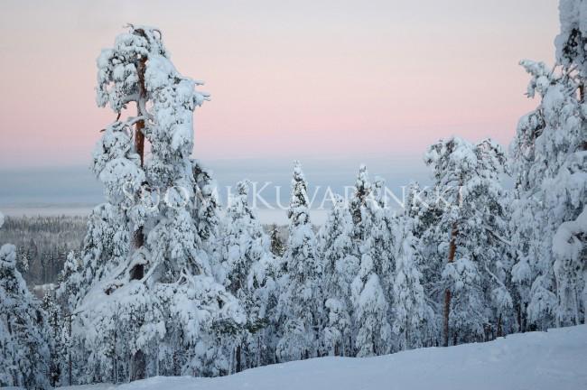Lumi Laukut Suomi : Talvi lumi kategoriat suomi kuvapankki